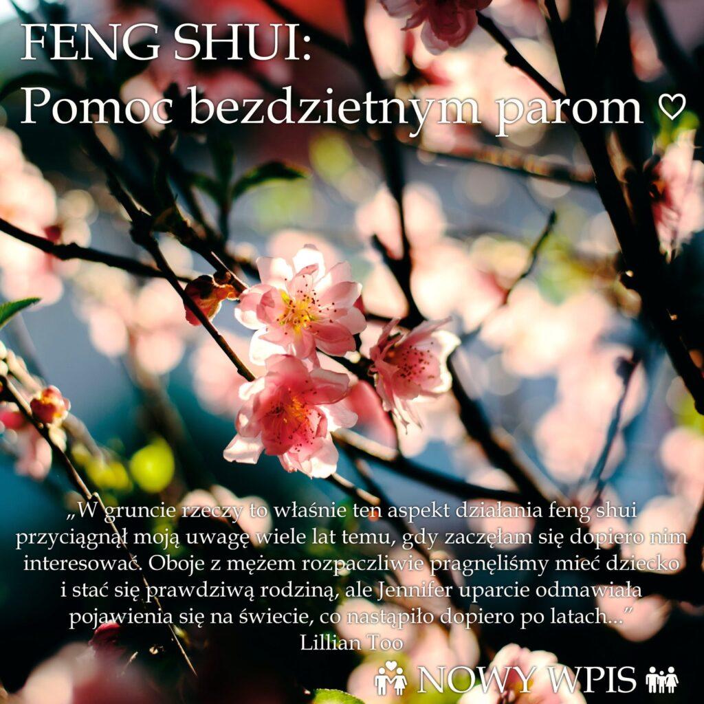 feng shui konsultacja kraków irmina wrona astrologia konstelacje systemowe kroniki akaszy